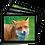 Thumbnail: Placemat set of 4 - Mammal Set