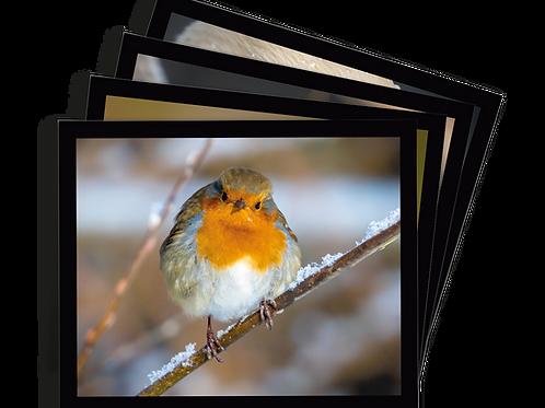 Placemat set of 4 - Birdlife set