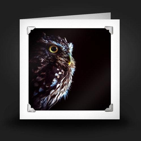 Night Owl - Greetings Card