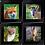 Thumbnail: Coaster Set of 4 - Mammal Set