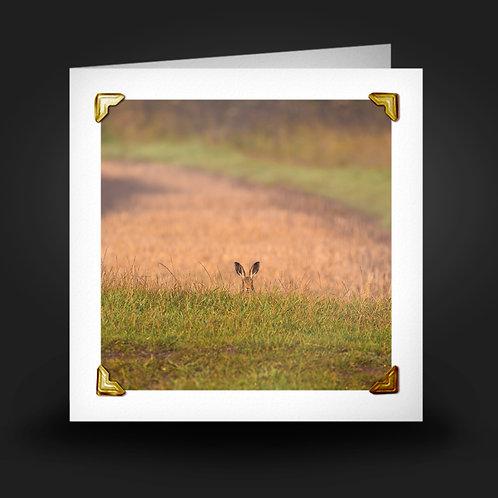 Hide & Seek - Greetings Card