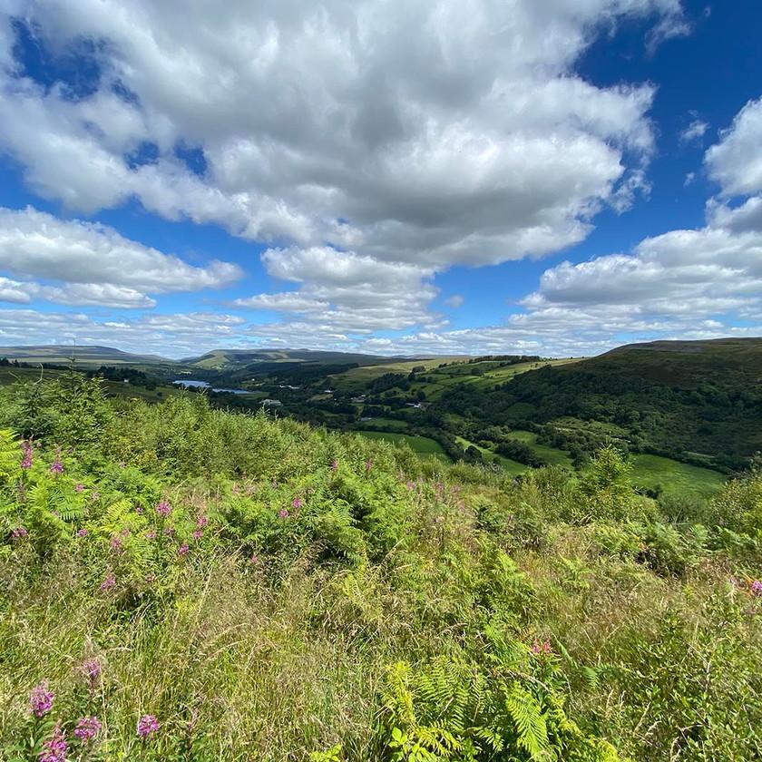 Looking North towards Brecon