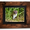 Thumbnail: Young Stoat - Framed artwork