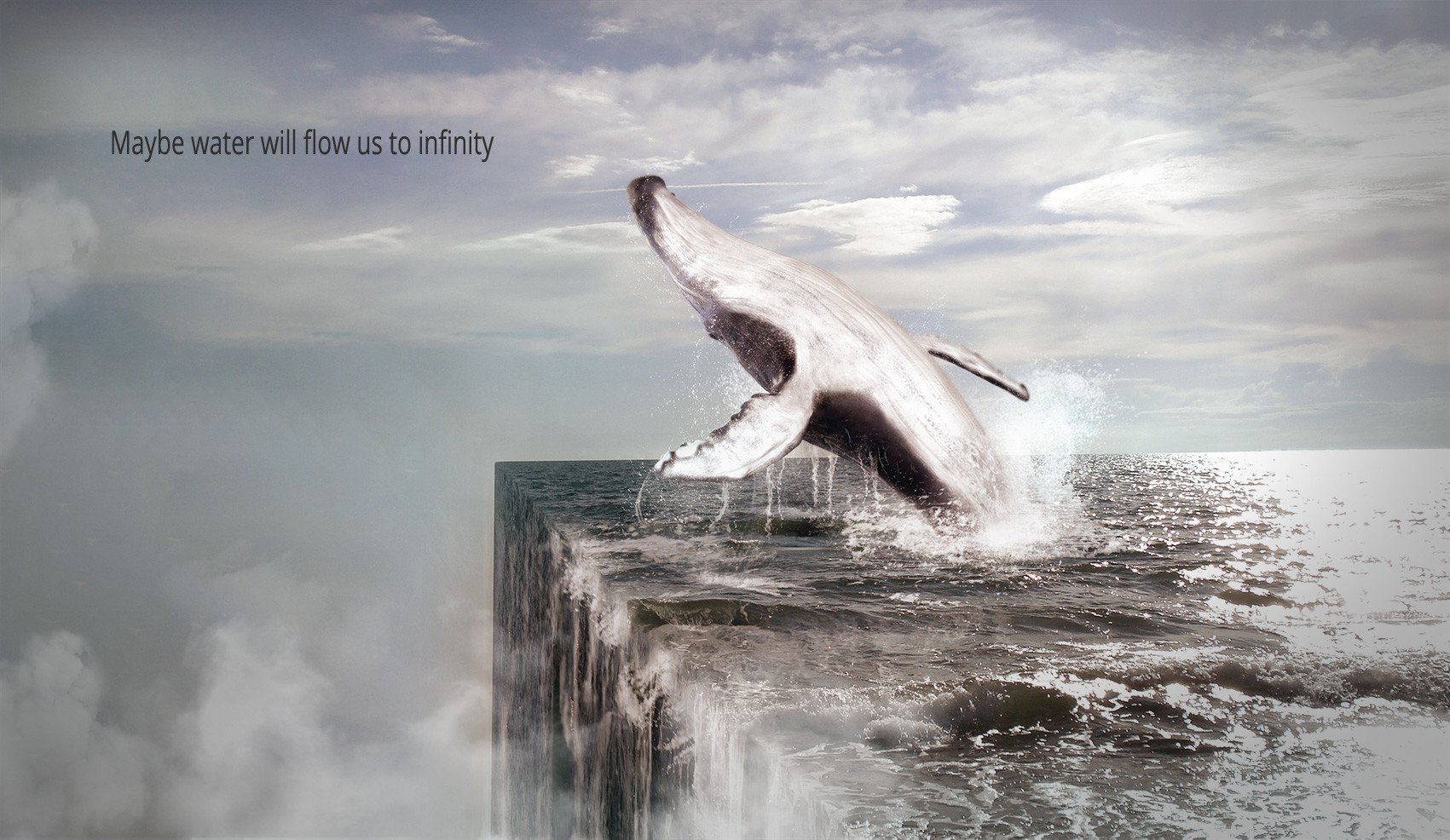 Whale compositing
