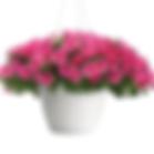 headliner lipstick petunia.png