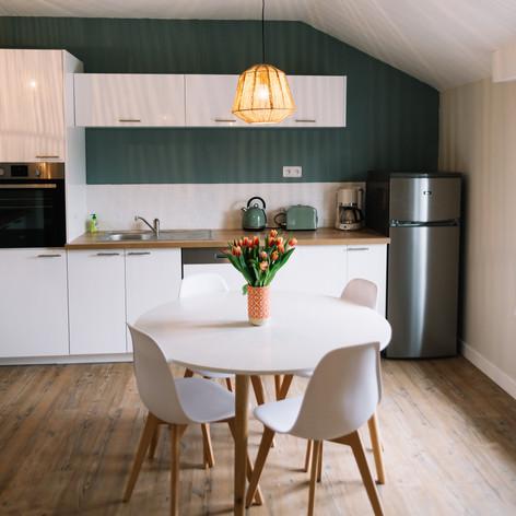 grün Küche Küchenfront.jpg