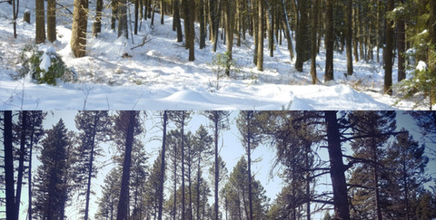 BC Parks Before and After