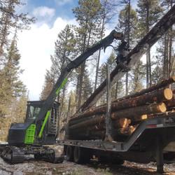 Log loading mini excavator