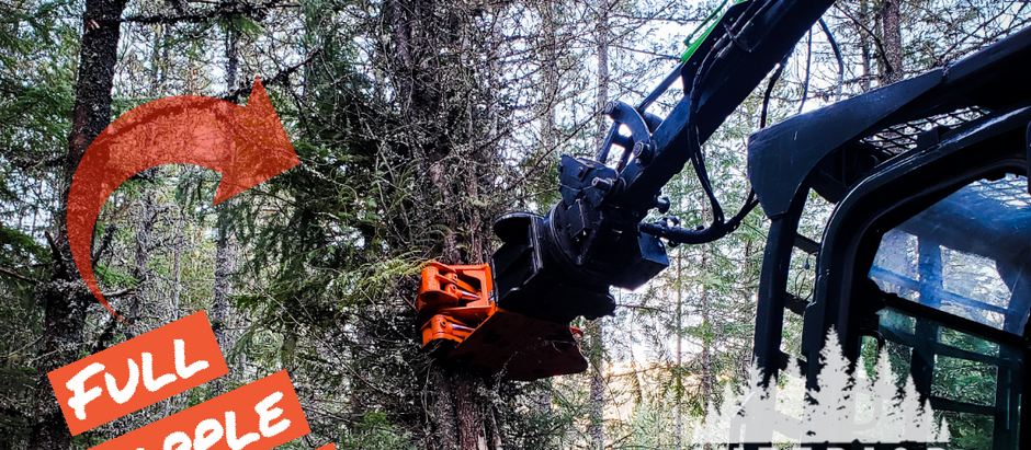 How to pick a Tree Shear