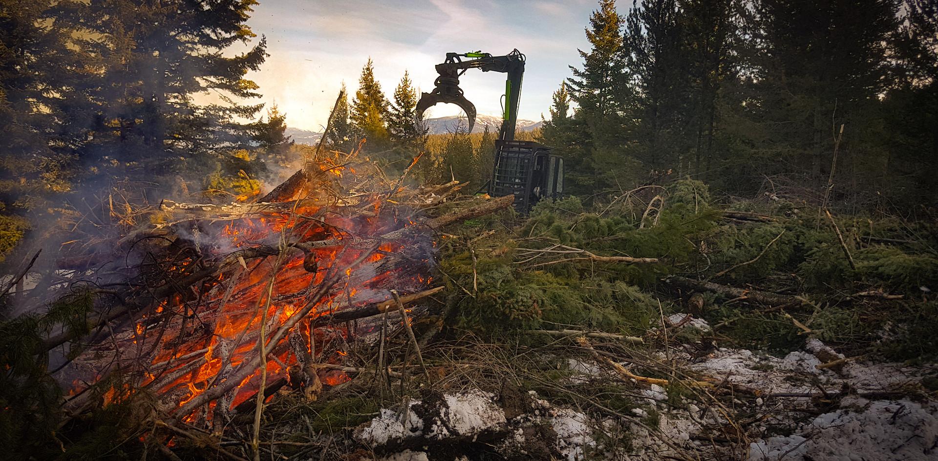 Burn Pile Management