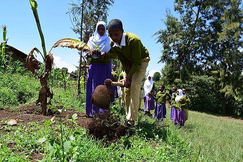 Carbon_Free_Dining_Tanzania_19.JPG