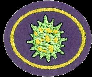 Viruses (Pathfinder Honor)