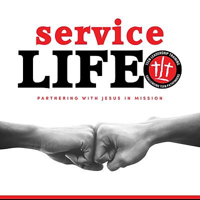 "TLT ""Service Life"" Event"