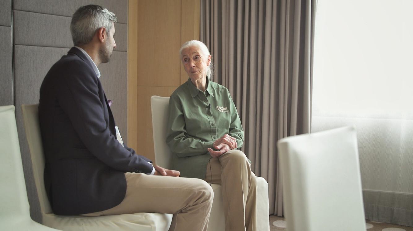 Interview mit Jane Goodall