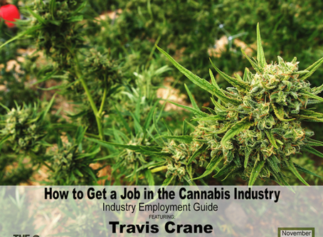 Getting Cannabis Industry Jobs: Industry Employment Guide