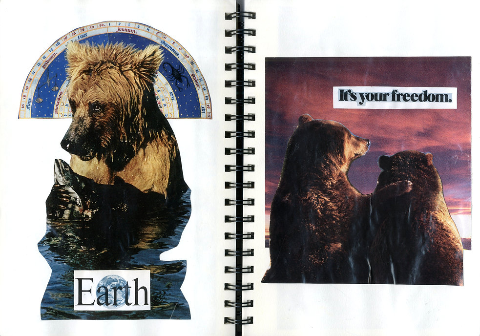 bear-necessities-collage.jpg