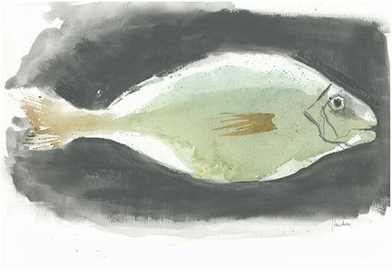 17. poisson vert.JPG