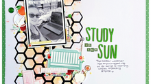 Study in the Sun | Terri Morris