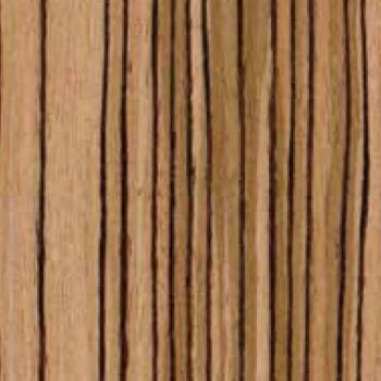 Echo Wood: