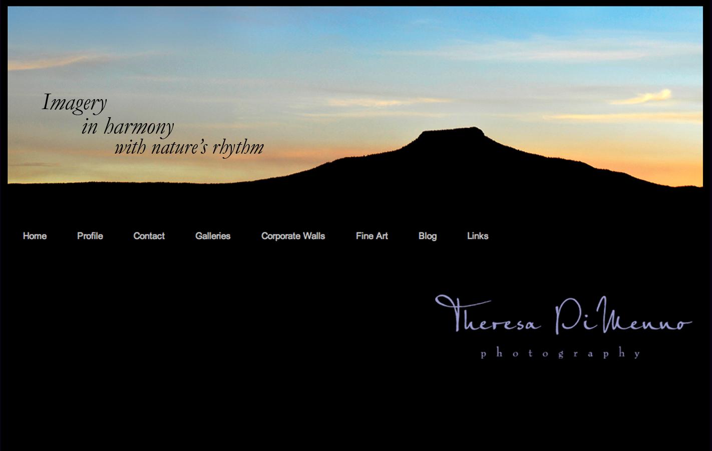 TDP website home