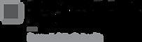 DVS_Logo_1C copy.png
