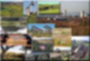 Banning-Ranch-Photos.jpg