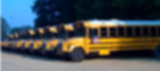 Picture of school buses