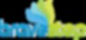 BraveStep_Logo_Final.png