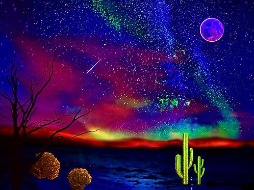 Nocturnal Desert