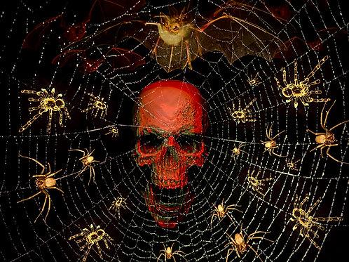 Webbed Skull (Halloween-Themed)
