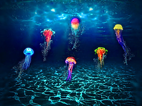 Jellyfish Aglow