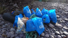 Was This Your First Beach Clean?