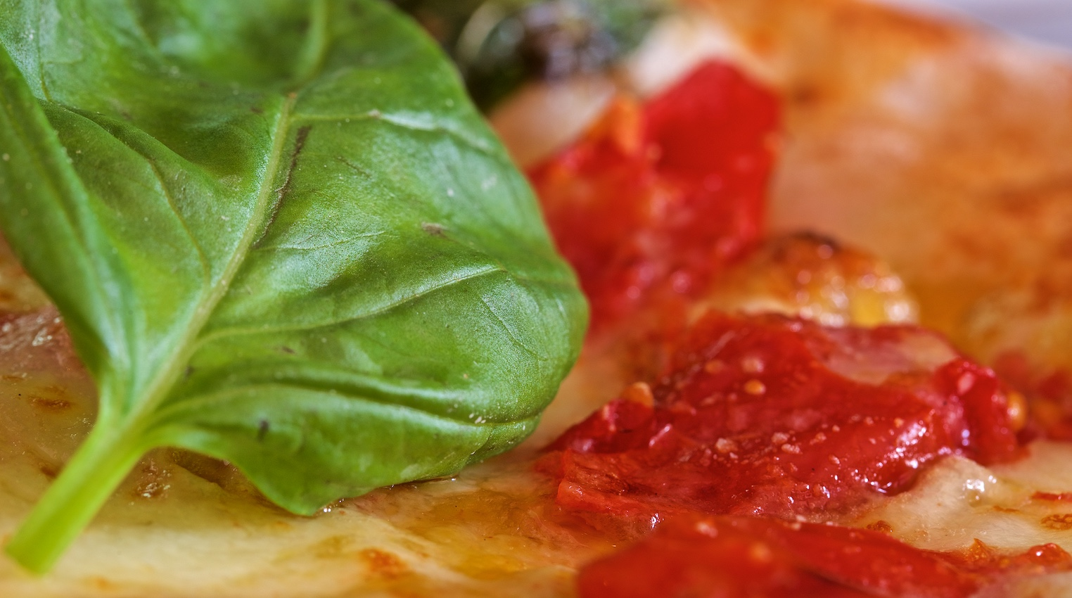 151-Pizzazzà-Nologo_IMG_1657