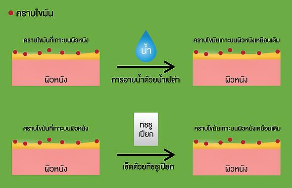 Skin Layer- Thai Update-03.png