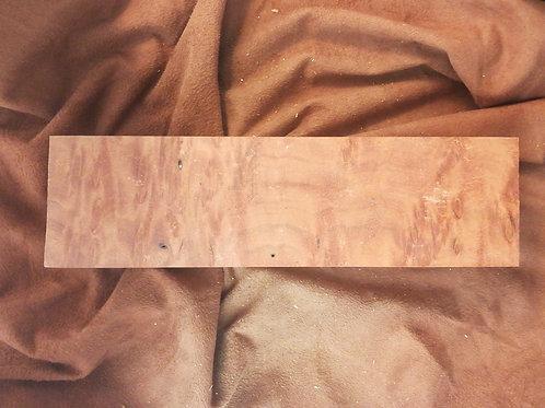 Eucalyptus: Burl