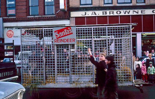 Santa's Reindeer 1966.jpg