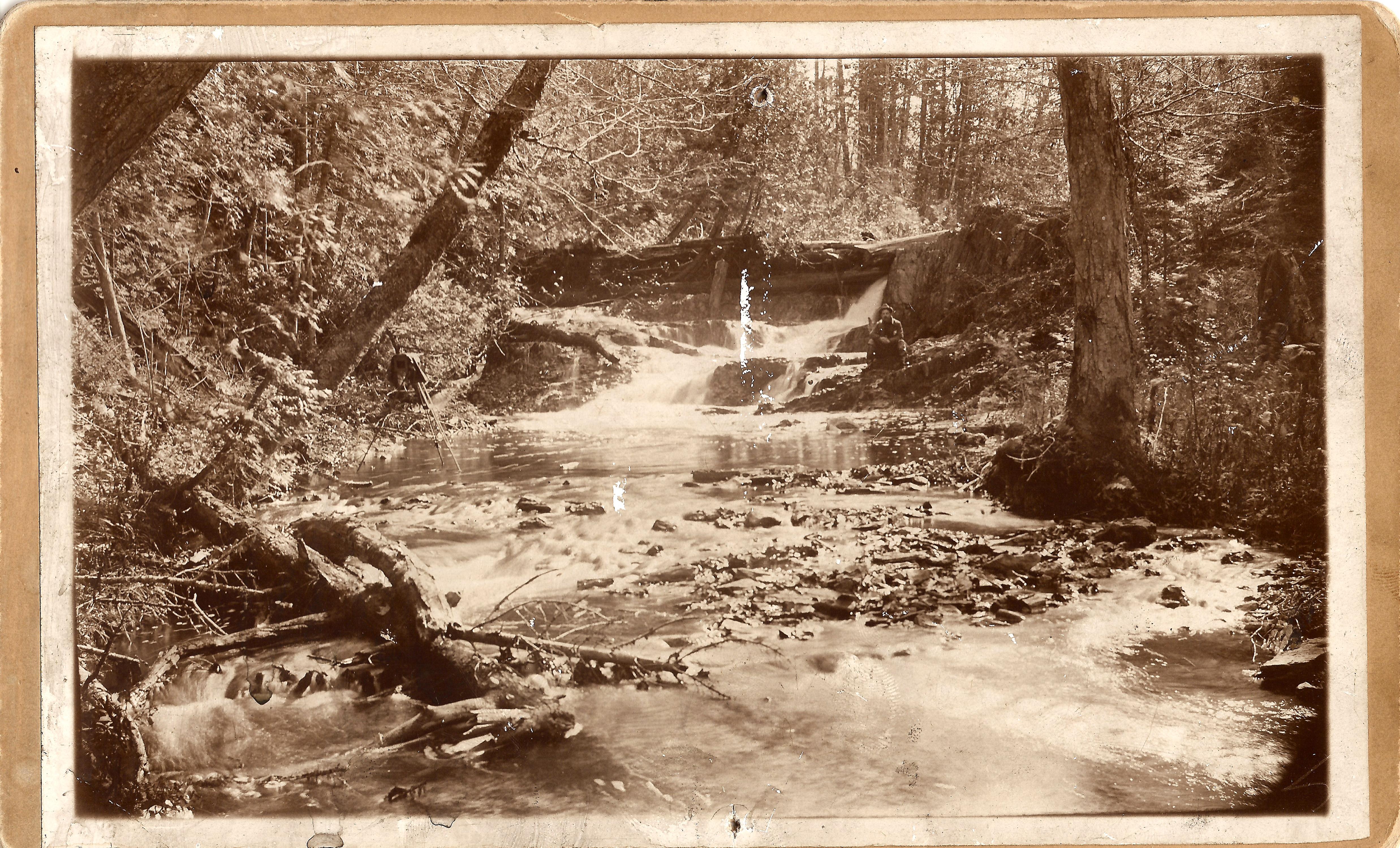 Cooks Brook Dam