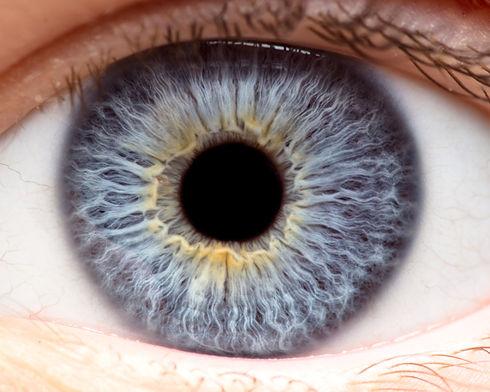 Bilan d'iridologie