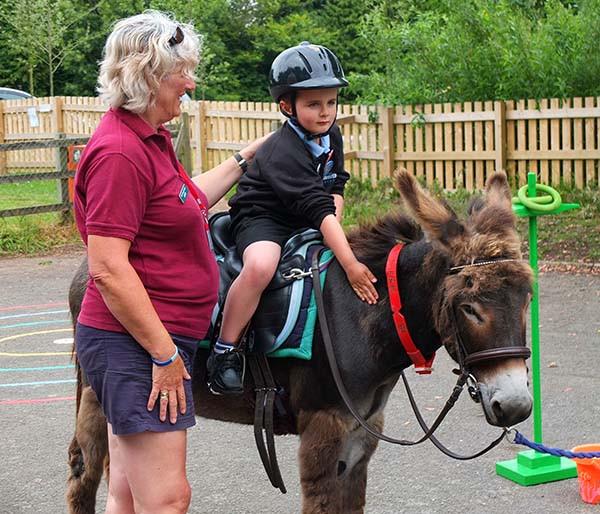 Donkey visit - 600.jpg