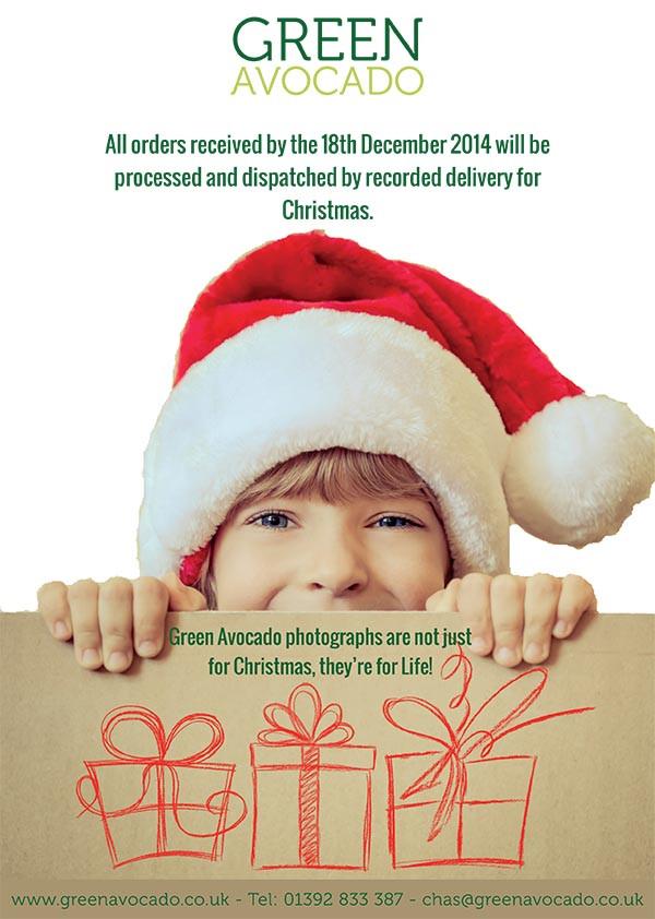 Green Avocado Christmas poster - 600px.jpg