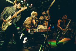 will wood and the tapeworms show