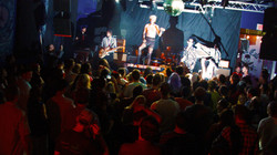will wood tapeworms show crowd