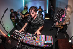 will wood tapeworms psychedelic pian