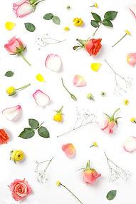 Coral Flowers_edited.jpg