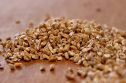 wheat kibble