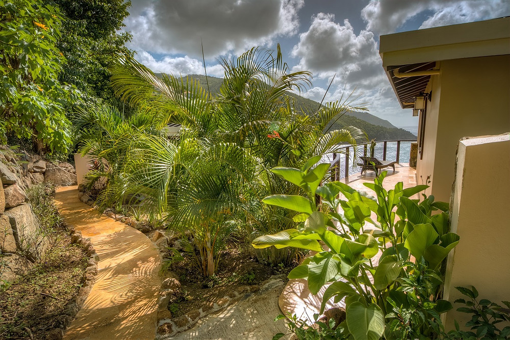 tortola-my-all-et-son-vaste-jardin
