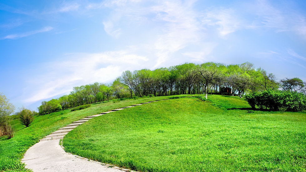 road-on-a-green-hill2.jpg