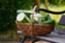 zucchini-2516229_1920.jpg