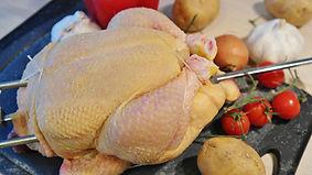 chicken-1884873_1920.jpg