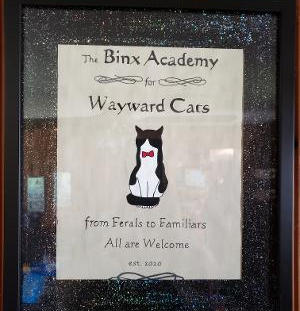 Custome Pet Signs